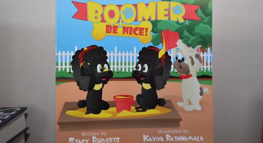 Boomer Be Nice